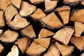 Exportações de madeira, papel e celulose crescem 7,3% no 1º semestre