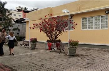Árvore dos Sonhos e Casa do Papai Noel já podem ser visitadas