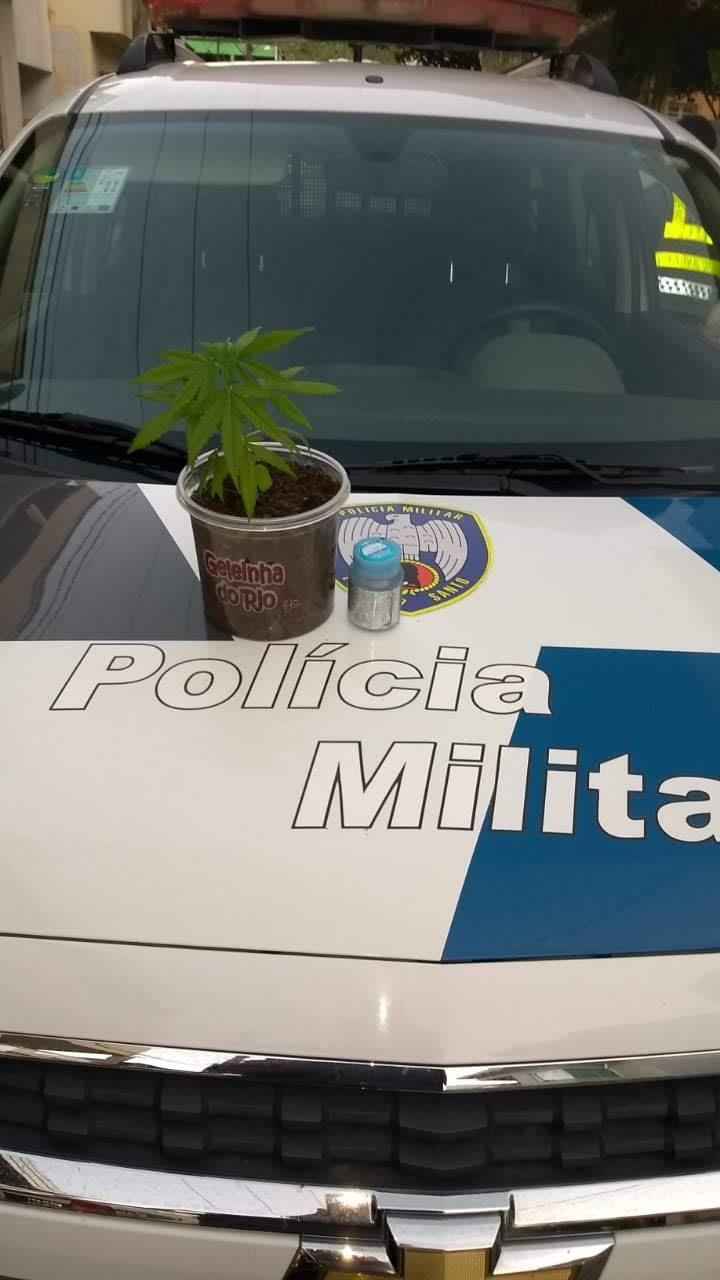POLÍCIA MILITAR APREENDE ENTORPECENTES EM ICONHA