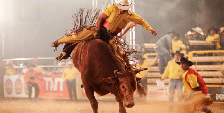 Rodeios e Shows sertanejos vão agitar festa Agropecuária em Iconha