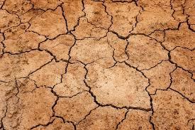 Coreia do Norte: seca poderá agravar escassez de alimentos
