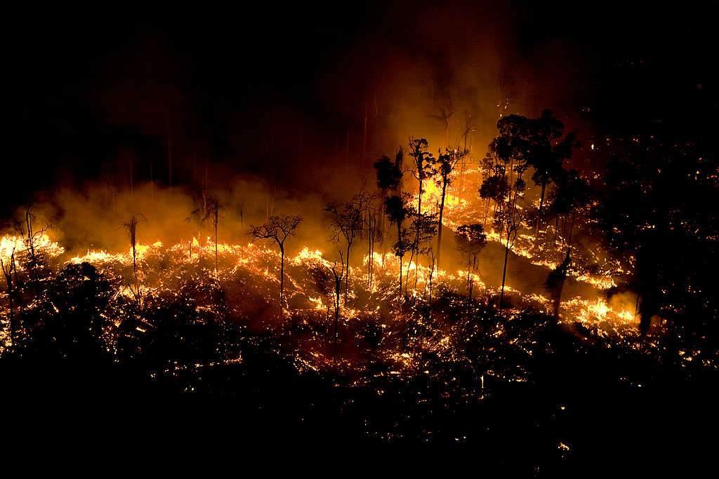 Número de queimadas cresceu em 82% este ano no Brasil, diz Inpe