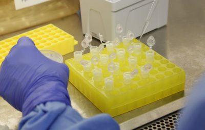 Brasil capacita nove países para diagnóstico do novo coronavírus 400x255 - Fiocruz detecta variantes do coronavírus em três regiões do país