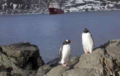 Degelo das calotas polares ocorre 6 vezes mais rápido que nos anos 90 400x255 - Degelo das calotas polares ocorre 6 vezes mais rápido que nos anos 90