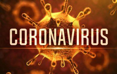 coronavirusmgn 400x255 - Coronavírus: Assembleia Legislativa aprova estado de calamidade pública no ES