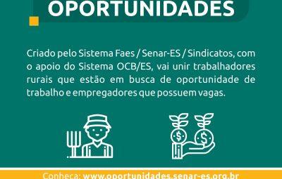 Divulgação bancooportunidades rev01 400x255 - Site promove oportunidades de trabalho nas propriedades rurais do Espírito Santo