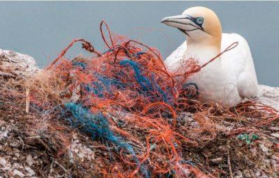 plastico 400x255 - Poluição de plásticos em oceanos pode triplicar até 2040, alerta estudo