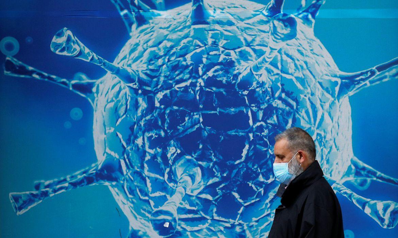 Covid-19: anticorpos podem durar até 12 meses após infecção