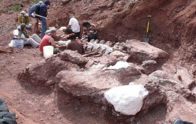 titanossauro 400x255 - Titanossauro descoberto na Argentina é exemplar mais antigo da espécie