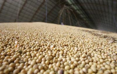 safra 1 400x255 - IBGE prevê safra recorde de 258,5 milhões de toneladas em 2021