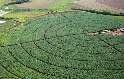 conab 400x255 - Conab estima safra de grãos 2021/2022 em 289,6 milhões de toneladas
