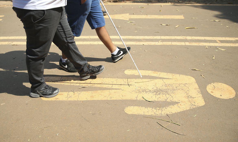 Pessoas com deficiência em 2019 eram 17,3 milhões